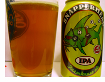 Butternuts Beer and Ale Snapperhead IPA